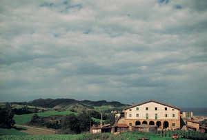 124.  Los cinco grandes arcos de piedra labrada del caserio Gurmendi (Zarauz) son fruto de una tierra de buenos canteros y de una larga tradicion de arquitectura rural realizada por maestros de solida experiencia.