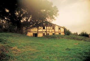 39.El caserio Balanzategi Haundi (Zarautz) se protege bajo la sombra de una corpulenta encina.