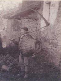 41.Segador de Olaberria a principios de siglo. Los prados de siega y las repoblaciones forestales han sustituido a los campos de cultivo en los valles de Guipuzcoa.