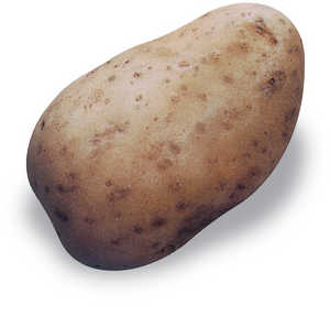 45.La patata, que hoy es un ingrediente basico de la gastronomia local, no se difundio hasta mediados del siglo XIX.