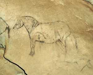 104. Detailed painting of a horse. There is a spear stuck in the front part of the body, at the position of the heart and another in the lower hind quarters.© Jesús Altuna