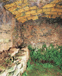 149. Combustion chamber at Jos� Ortiz de Zarate's kiln in Elosu. Note how the intense heat has vitrified the stones in the vault.© Jose L�pez