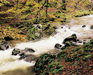 152. The many rivers and streams in the region formed an important source of food for the settlements.© Xabi Otero